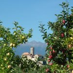 Gita al Castel Valer ed al Santuario di San Romedio